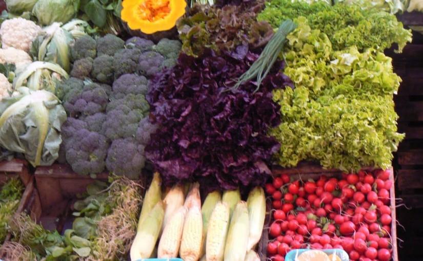 El jardín de tus sueños: Review de GroOrganic's Online Garden Planner
